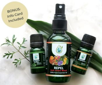 best natural bug repellent