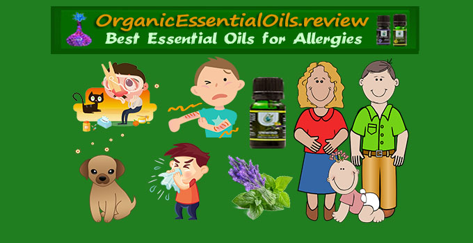 Essential Oil for Allergies